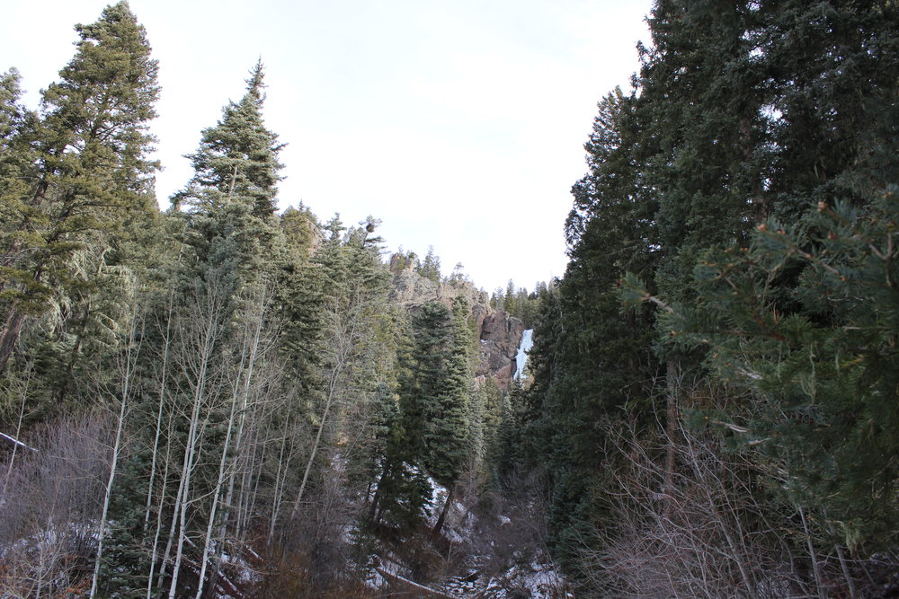 View of the falls from the parking lot just off Wolf Creek Pass.