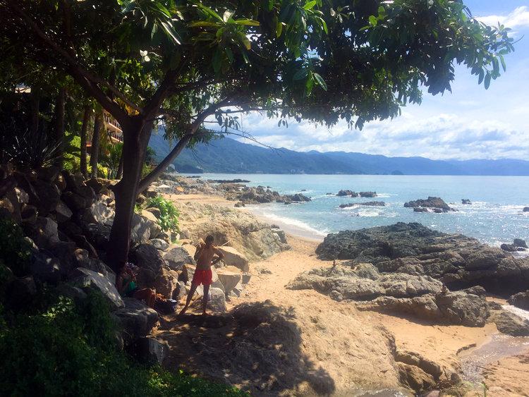 mexico pacific beach club landscape design pro
