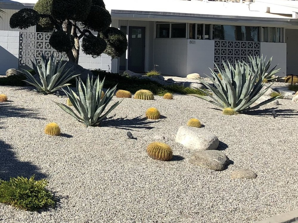 Cactus Garden: - Landscaping with cactus can often lead to creating a dramatic statement. Plants such as Yuccas, Agave, Tamarisks, and Succulents complete the dessert appeal of desert gardens. Sculptural boulders, gravel, aggregate concrete walks, and Adobe are representative material elements in these water conscious gardens.