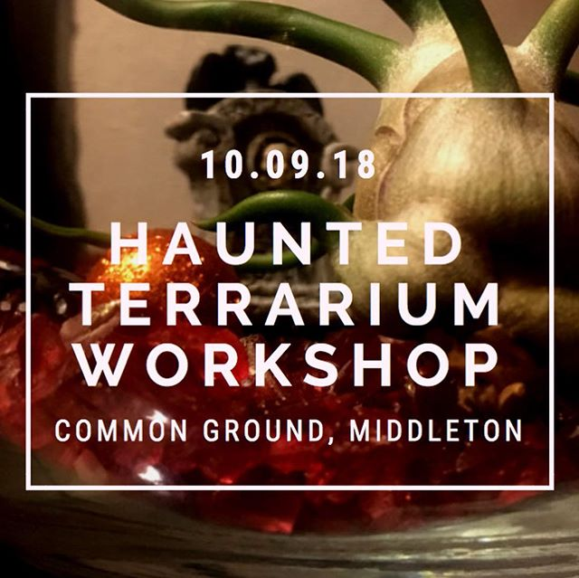 We are sold out for our Haunted Terrarium Workshop tonight! Thanks and see you tonight @commongroundmiddleton