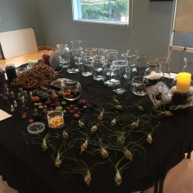 Thanks to everyone who came to the Haunted Terrarium Workshop! Your creations were so spooky!!