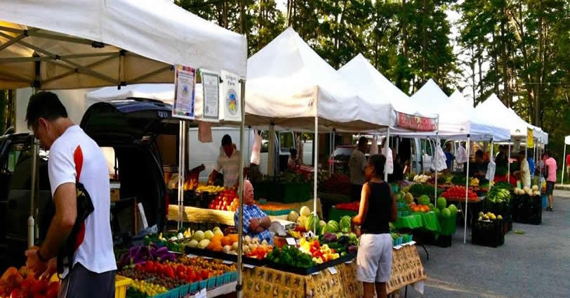 Golden Farmers Market for fresh fruits and veggies in downtown Golden, Colorado