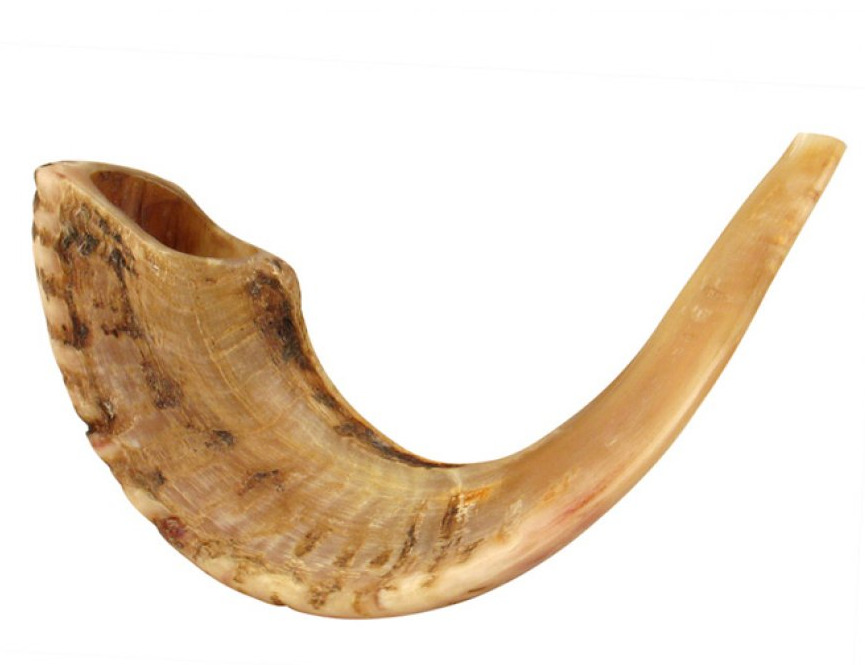Would you like to sound the shofar at the High Holiday Family Services?