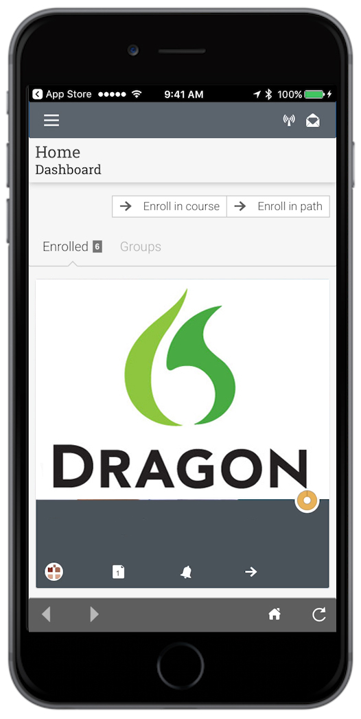 Dragon screen2.jpg
