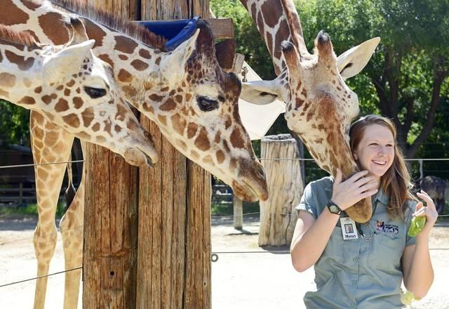 Fresno Chaffee Zoo Visit