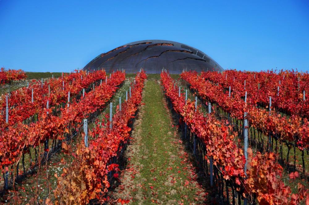 Tenuta Casterbuono Winery