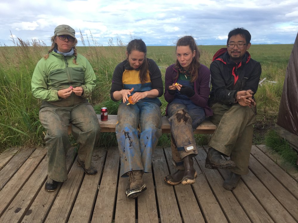Archeological Crew: Carllotta Hillerdal, Alice Watterson, Anna Mossolova, John Lim