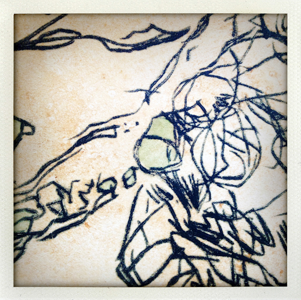 Nature/Nurture folio: detail of James Parker's print
