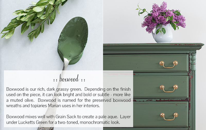 boxwood-updated.jpg