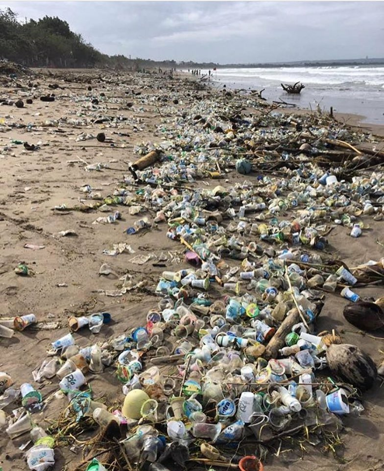 plastic-waste-ocean-issue-3.jpg