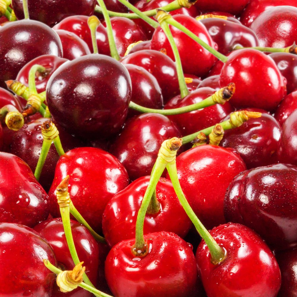 Seasons Tart Cherry by Riverport Trading