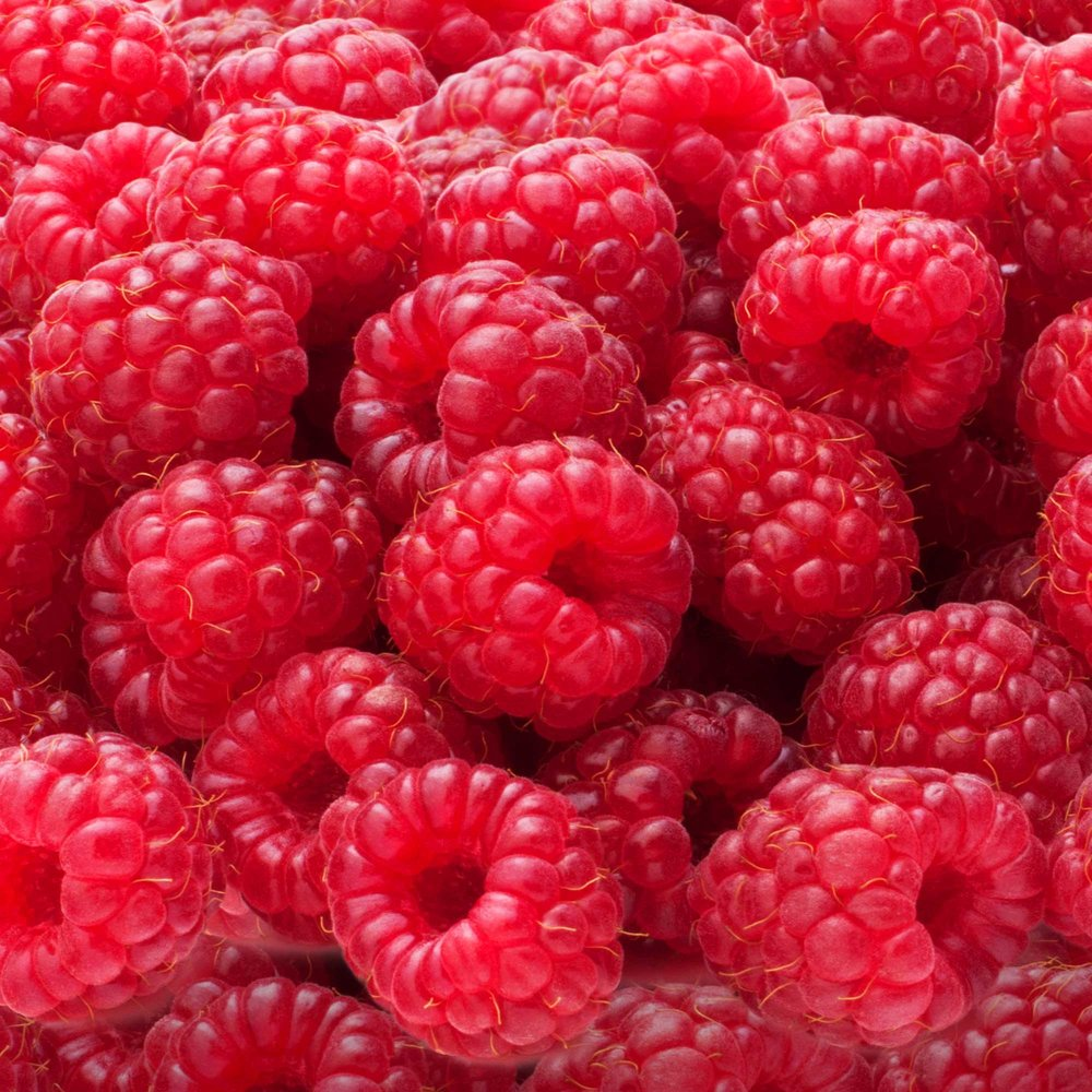 Seasons Raspberries by Riverport Trading