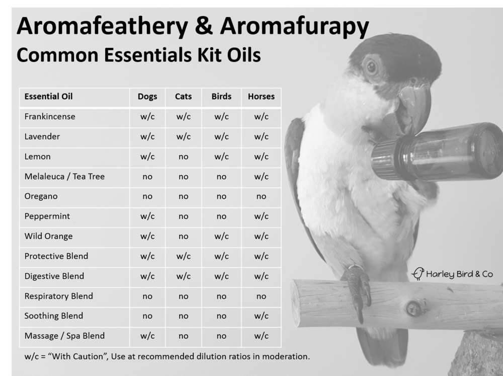 common oil kit oils_greyscale.png
