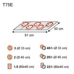 T75E 1