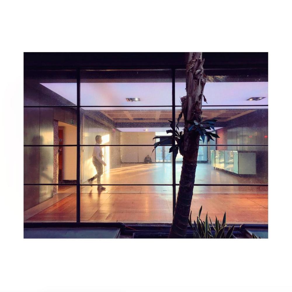 Barbican Conservatory, London – UK