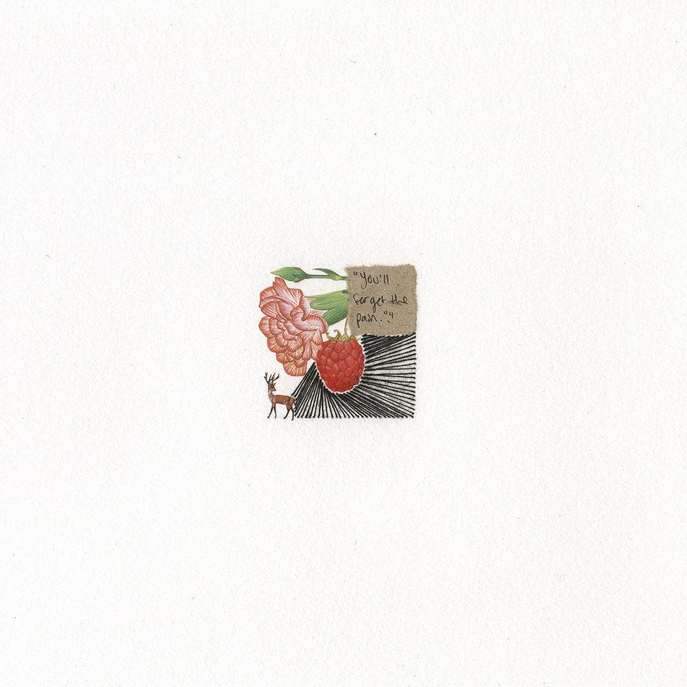 week 8 (raspberry)