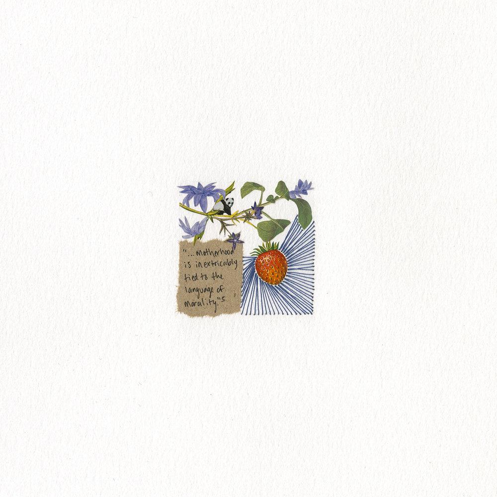 week 10 (strawberry)