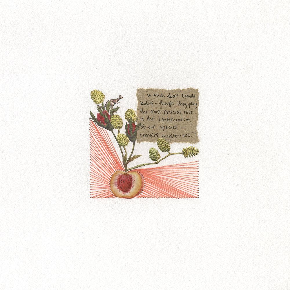 week 14 (peach)
