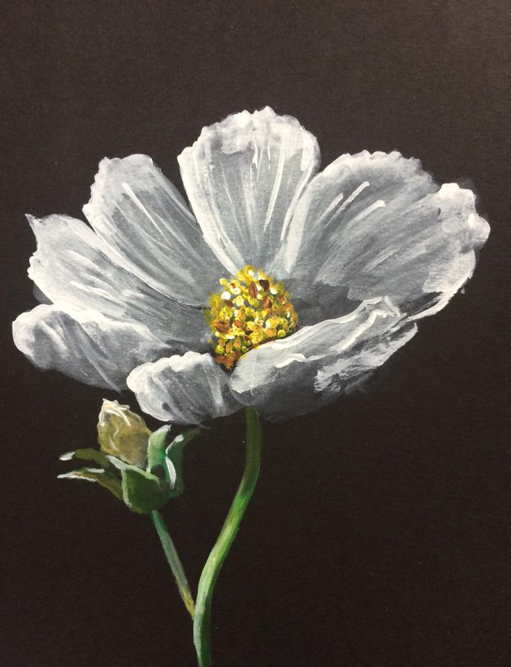Flower 02 - Acrylic paint on black cartridge paper