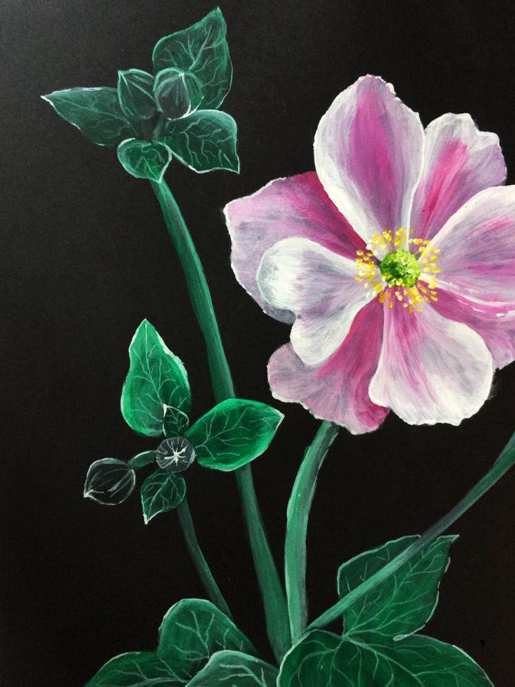 Flower 05  - Acrylic paint on black cartridge paper