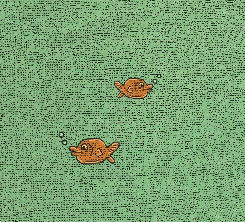 goldfish+bright.jpg
