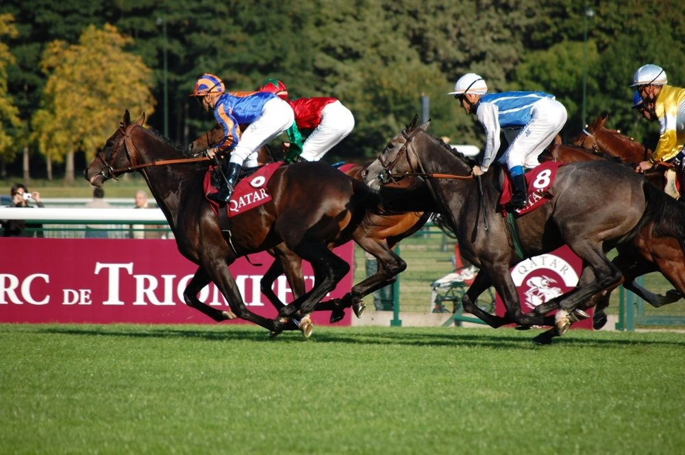 Panorama Restaurant  - Longchamp Racecourse, Paris Saturday 6 & Sunday 7 October 2018£899 Per Person