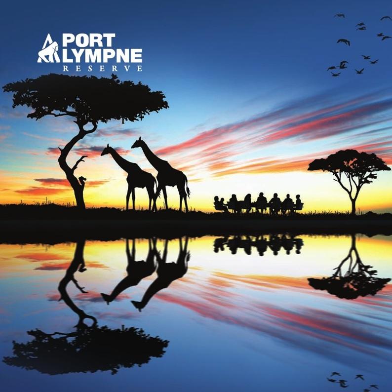 Port-Lympne-1.jpg