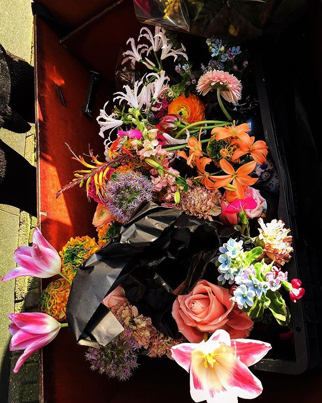 #season #leftovers #floral #floralarrangement #discarded after #event #comingback to #flowershop in #bakfiets #bike #change #time #moves in #equal and #democratic way relating to all #humans #living #nature #flowers are the same for #everyone #colors are also equal joy #amsterdam