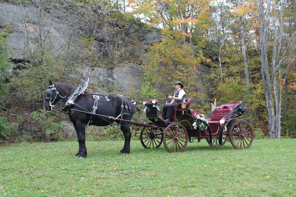 Carriage ride... - write your own cinderella / prince charming story - glass slippers not required!