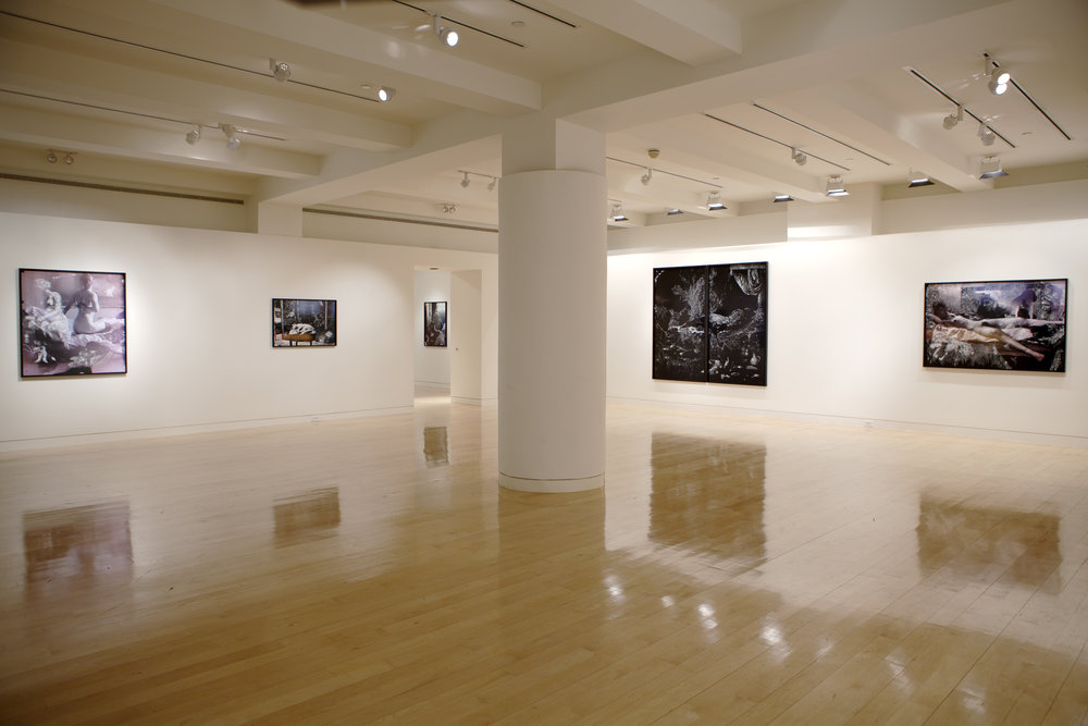 Nudes and Revolutions install-Houk 2011_03.jpg