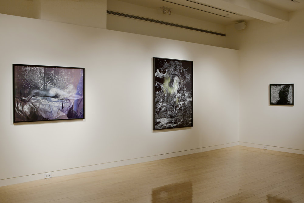 Nudes and Revolutions install-Houk 2011_05.jpg