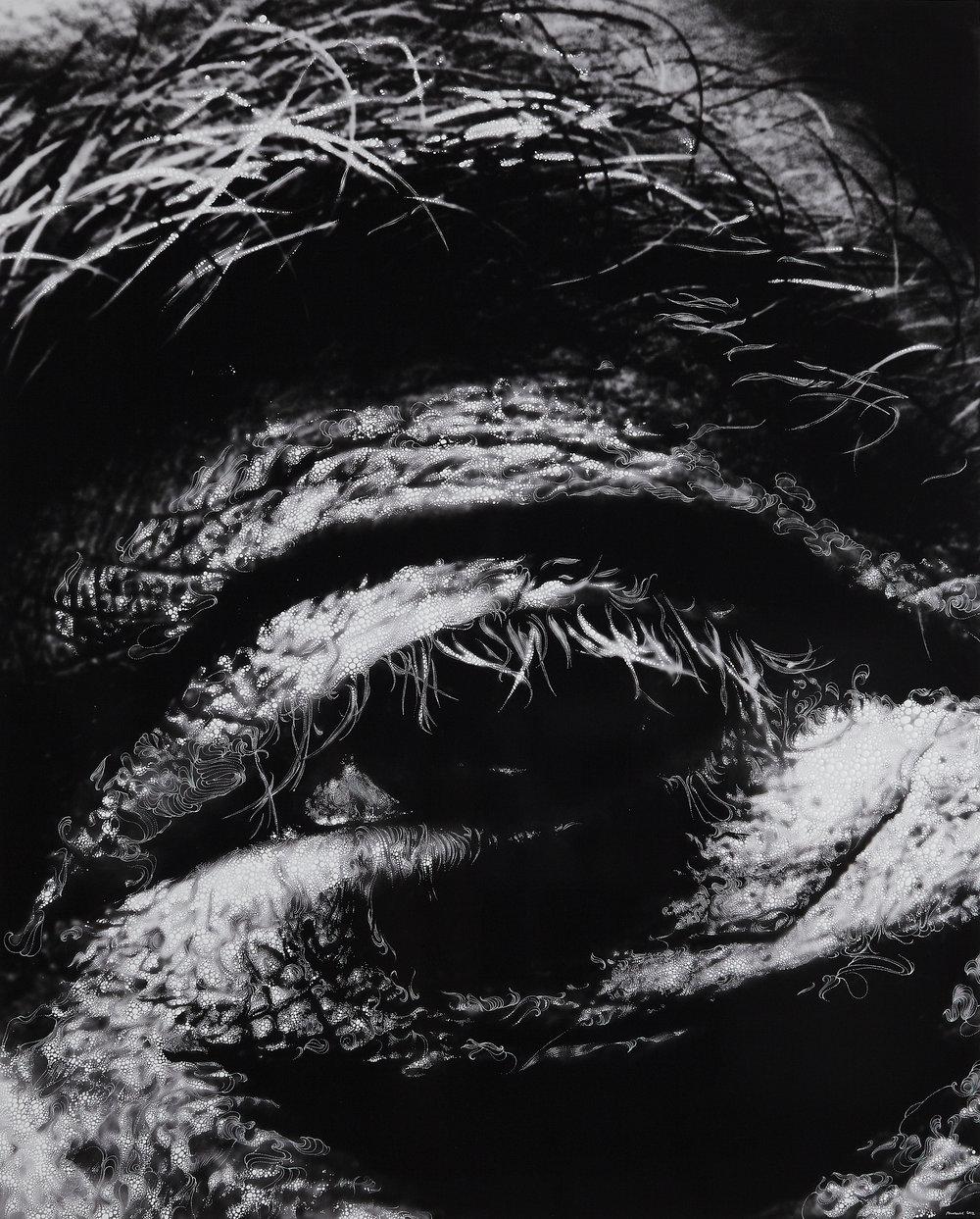 Eye 3 - 2012.jpg