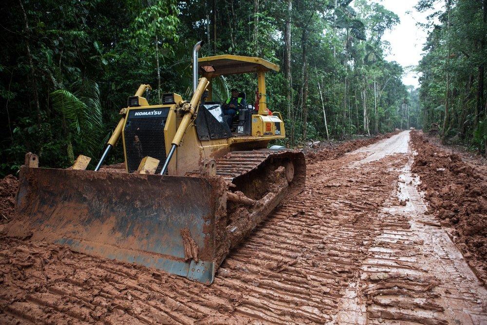 Bau einer Zugangsstraße im Primär-Regenwald im Siona-Territorium, Provinz Sucumbus