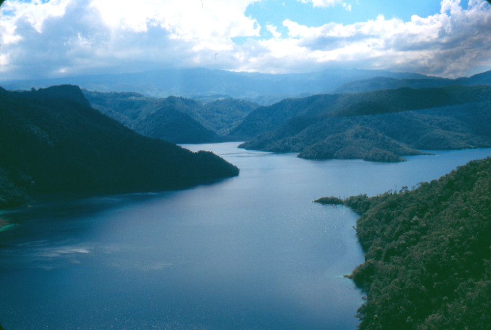 Hemos protegido 675 hectáreas de bosque primitivo - Nuevas Raíces ayudó a reservar como área protegida 675 hectáreas de biodiversidad de la Laguna Brava con la ayuda de comunidades locales. También vinculamos tierras forestales al plan de pago del ecosistema nacional para asistir a otras 250 hectáreas.Nuevas Raíces trabaja con comunidades alrededor de la Laguna Brava en el diseño de alojamientos ecológicos y actividades al aire libre para promover las áreas como destinos de ecoturismo.