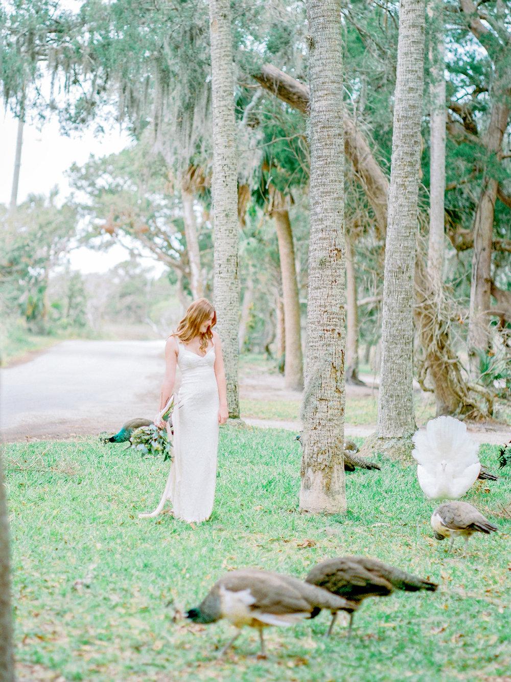 Lisa Silva Photography- Jacksonville, Florida Fine Art Film Wedding Photography (67 of 203).jpg