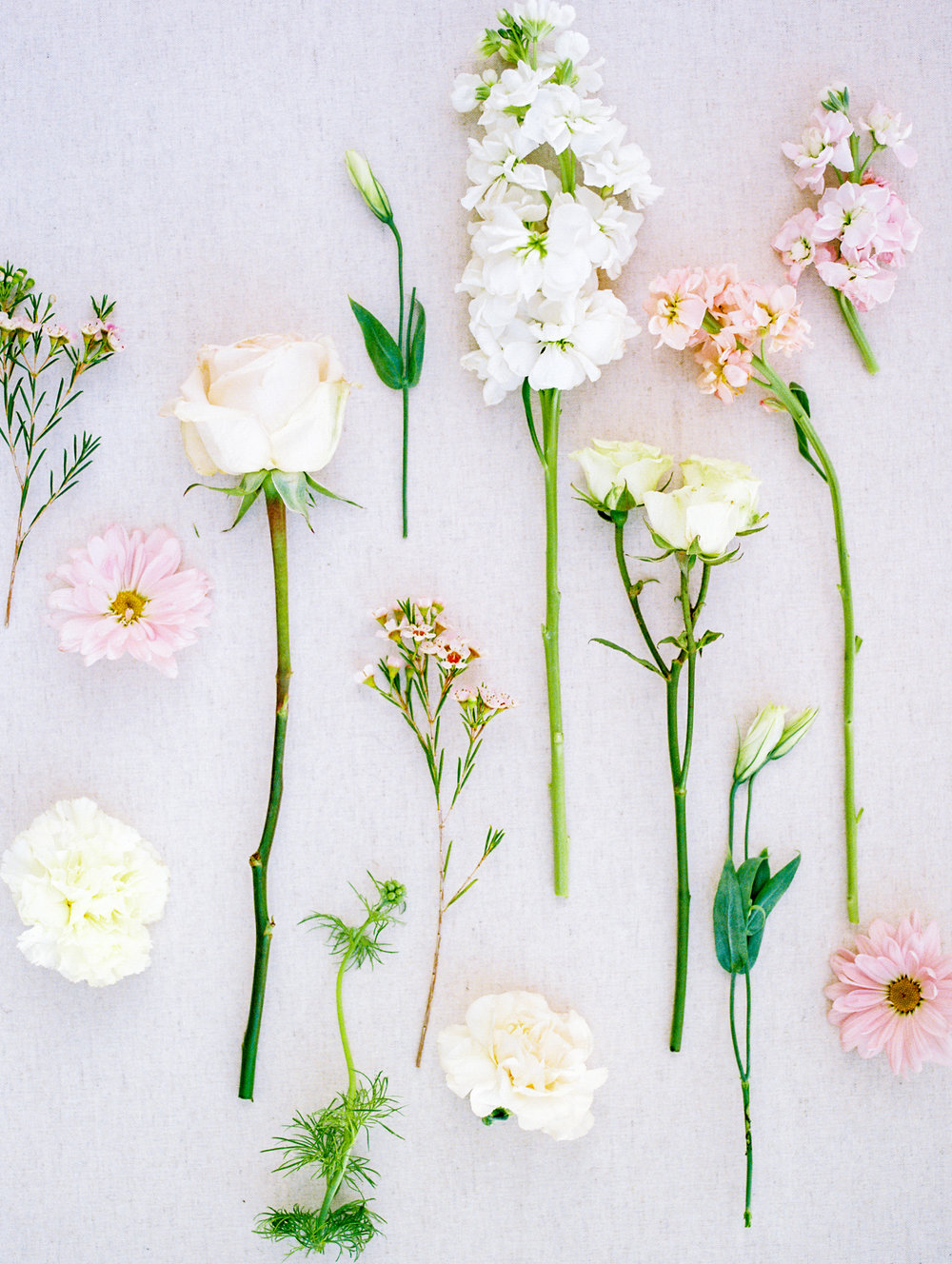 Ellie's Garden Spring Editorial by Lisa Silva Photography-28.jpg
