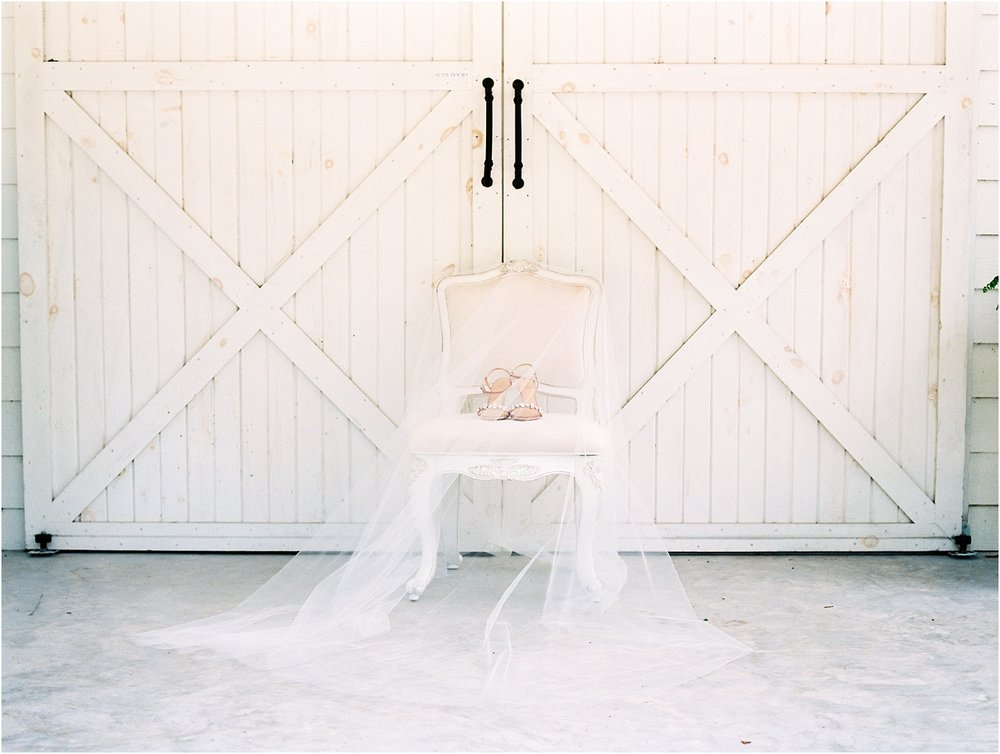 Lisa Silva Photography- Ponte Vedra Beach, St. Augustine and Jacksonville, Florida Fine Art Film Wedding and Boudoir Photography- Elegant Blush and Navy Wedding at Chandler Oaks Barn in St. Augustine, Florida_0008.jpg