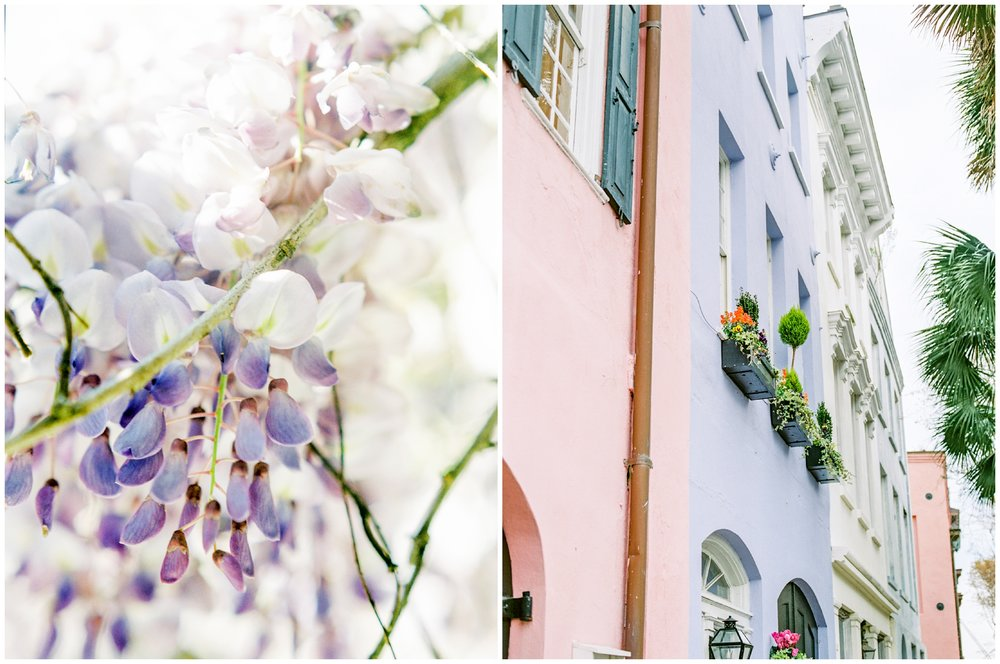 Charleston in the Spring