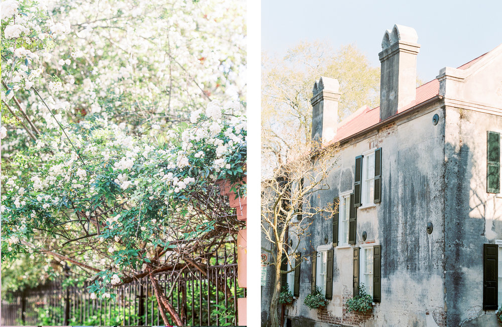 Lisa Silva Photography- Charleston and Jacksonville Fine Art Film Wedding Photography-7.jpg