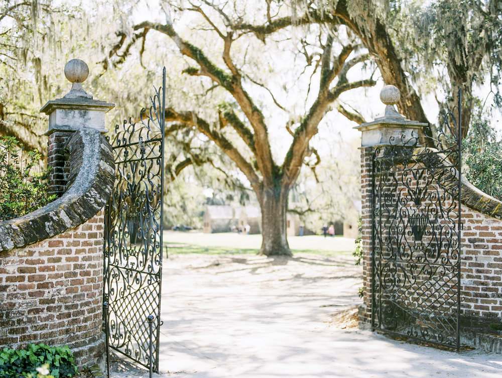 Lisa Silva Photography- Charleston and Jacksonville Fine Art Film Wedding Photography-11.jpg