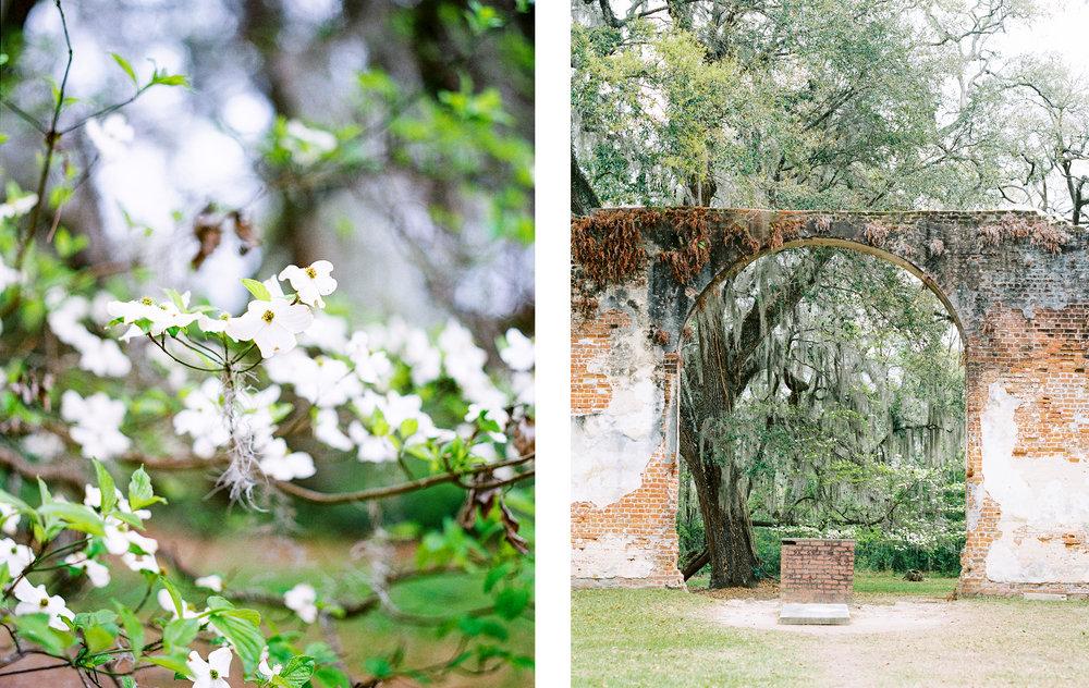 Lisa Silva Photography- Charleston and Jacksonville Fine Art Film Wedding Photography-22.jpg