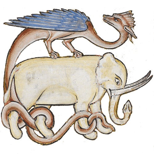 elephantdragon.png