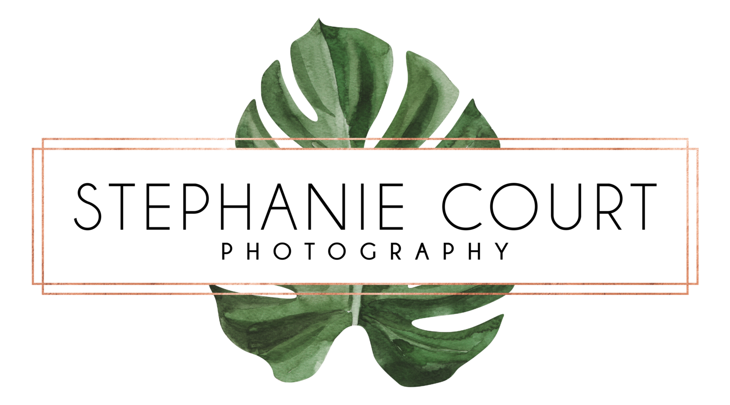 Stephanie Court Photography