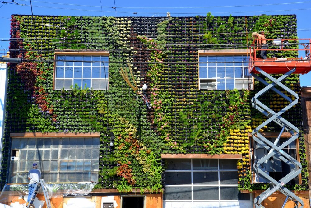Amanda-Goldberg-Brandon-Pruett-Planted-Design-Near-14th-and-Folsom-San-Francisco-Florafelt-Pro-System-Vertical-Garden-FB4.jpg