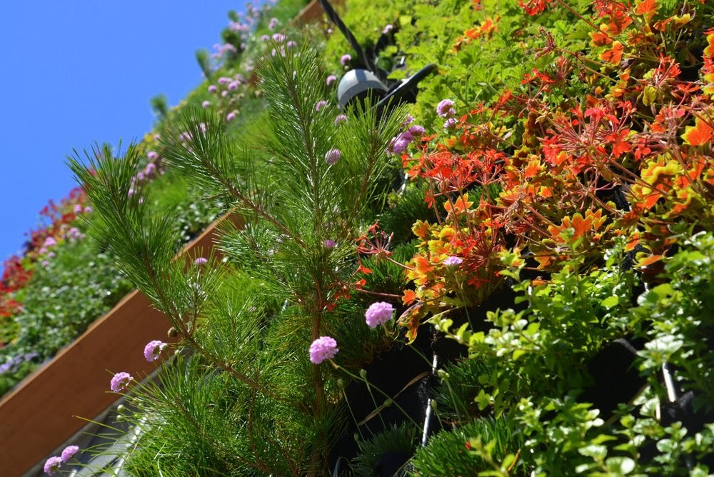Amanda-Goldberg-Brandon-Pruett-Planted-Design-Near-14th-and-Folsom-San-Francisco-Florafelt-Pro-System-Vertical-Garden-5-CJB_0399+copy.jpg