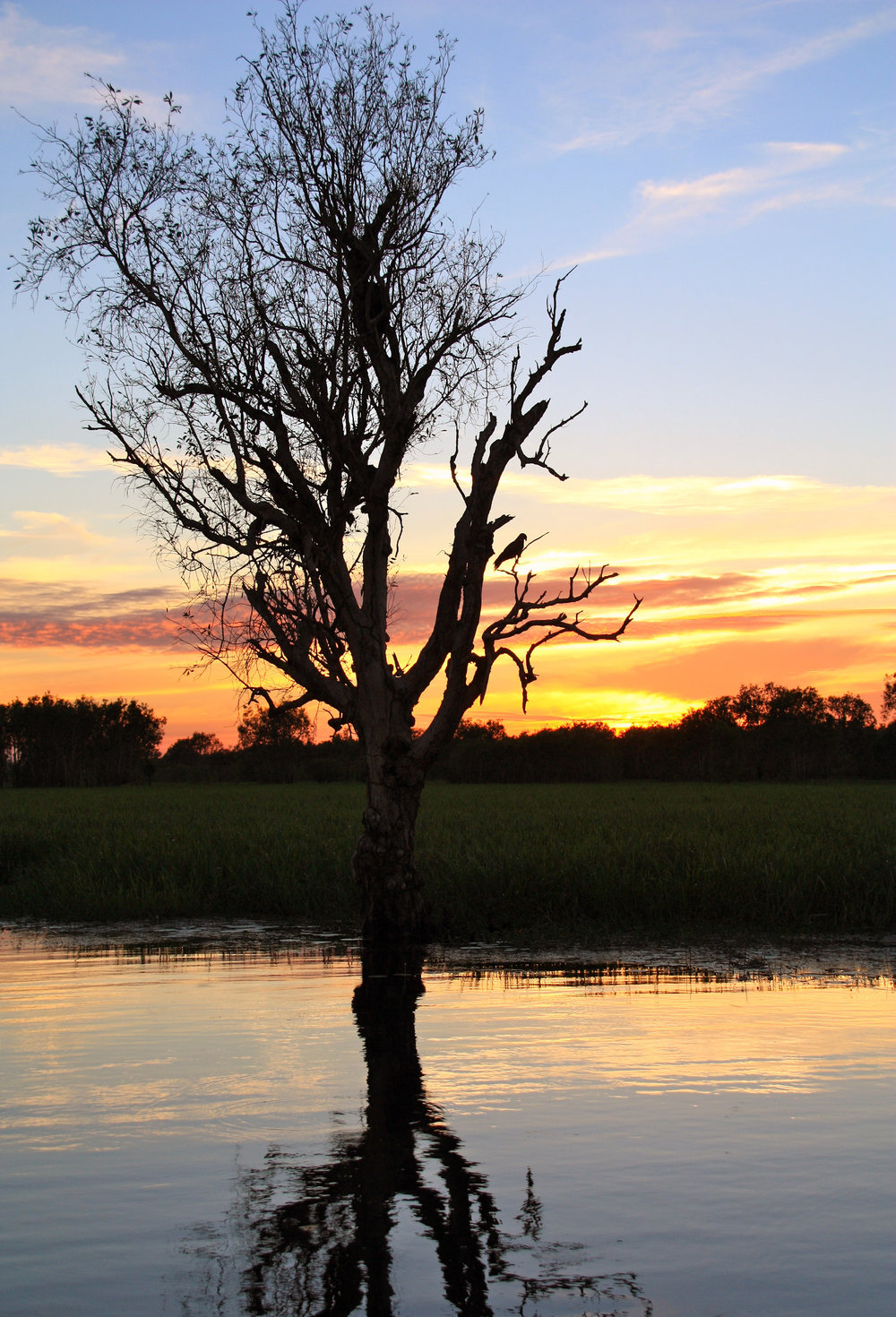 Darwin sunrise 2.jpg