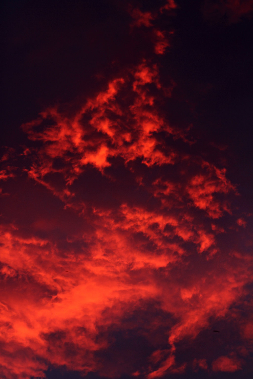 red skymedium.jpg