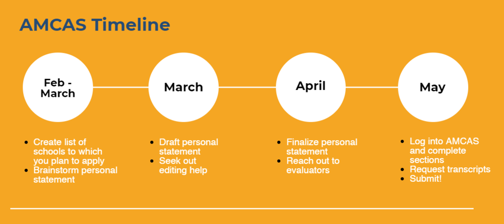 A timeline to preparing and submitting your AMCAS application
