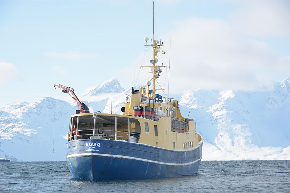 powderbird-greenland-heli-skiing-ship-kisaq38.jpg