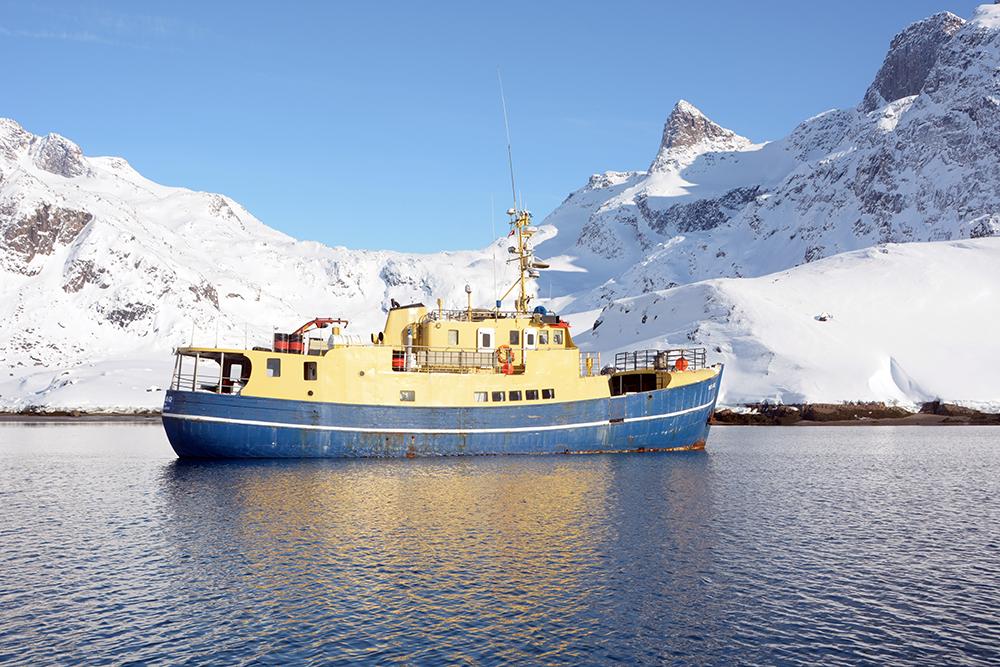 powderbird-greenland-heli-skiing-ship-kisaq17.jpg